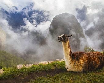 Peru Photography, Travel Photography, Machu Picchu, Peru, Machu Picchu Photo Prints, South America Photography, Mountain Photography