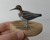 Red-necked phalarope / Phalaropus lobatus - bird carving - sculpture - wood carved birds - shorebirds sculpture