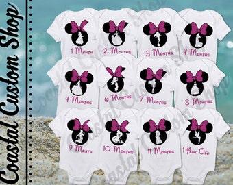 Monthly Milestone Onesies with Princesses 12 Pack