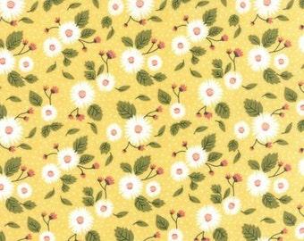 Little Miss Sunshine by Moda - 5020-12