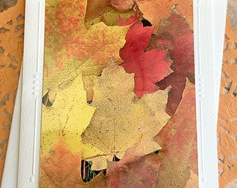 "Glitter Accent Fall Leaves Fine Art Photography Card, Autumn, Halloween, Thanksgiving, October, November, Fall Colors, Thinking of You 5""x7"""