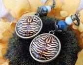 Tiger Stripe leverback earrings - bronze *Free Shipping*