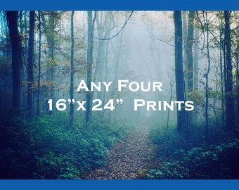 Discount Print Set - Save 25% on Four Prints, 16x24 - Fairytale Photos - Colorful Photography - Trees Collection