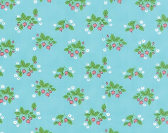 SALE - Gooseberry - Gooseberry Patch in Sky Blue: sku 5011-16 cotton quilting fabric by Lella Boutique for Moda Fabrics - 1 yard