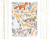 Foxes Field Guide Art Print - Classification Chart