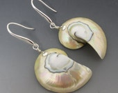 Creamy Nautilus Osmena Shell Sterling Silver Earrings