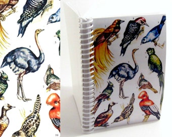 Natural History Colorful Birds Blank Sketchbook, Writing Spiral Bound Journal Diary, Back to School, Pocket Spiral A6 Cute Notebook, Ciaffi