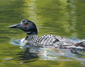 Lovely Loon on the water painting Giclee Reproduction 5 x 7