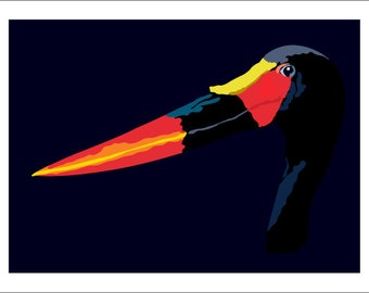 Saddleback Stork