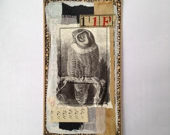 Original Collage - owl