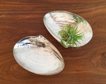Pair of Silver Plated Clam Shell Mint Candy Nut Dishes