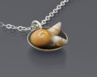 Seashell Necklace, sterling silver, tiny seashells, tidepool necklace, ocean necklace, beach necklace, nautilus shell