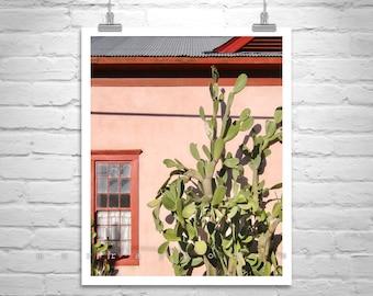 Tucson Arizona, Architecture Art, Southwest Decor, Barrio Viejo, Cactus Art, Art Photography, Southwestern Art, Cactus Print