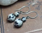 Sale Dalmation Jasper Earrings Sterling Silver Rustic Jewelry Black and White