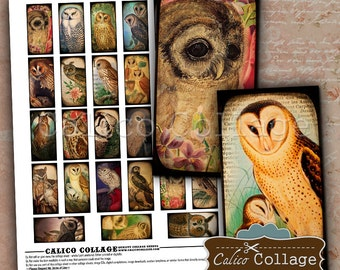 Majestic Owls, Collage Sheet, 1x2 Domino Images, Domino Collage Sheet, 1x2 Collage Sheet, Printable Ephemera, Domino Printable