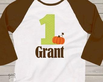 first 1st birthday pumpkin fall party RAGLAN  t-shirt PCFBPRT