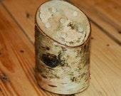 Birch log desktop pen/pencil holder