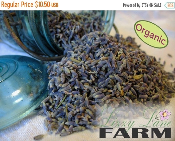 Black Friday Sale Organic Lavender, Premium Cooking Lavender Buds 1/2 pound. Culinary Lavender
