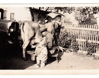 Grandpas Helper vintage Photo Milking Cow Man Child Cat Old Car