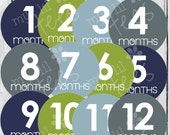 MONTHLY IRON ONS Decals or Monthly Stickers- 12 Monthly iron on heat transfers - for Baby Boy - Modern (Style#B11)