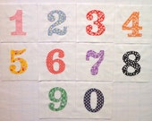 Numbers Appliqued Quilt Blocks
