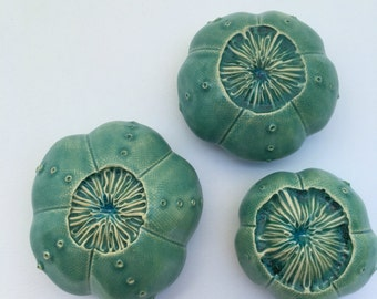 Three Matte Turquoise Sea Urchin Pods with Blue Glass