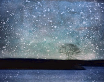"Abstract landscape photography surreal stars print dark mauve purple black blue  - ""Tree by night"" 8 x 10"