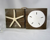 "Nautical Beach Decor Barn Wood Pallet Signs - 5"" Starfish & Florida Sand Dollar Barnwood Signs - Set of 2"