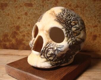 Dragon Face Skull