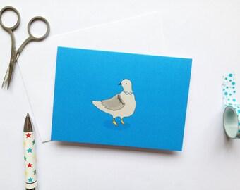 Pigeon - Bird Card - Blank