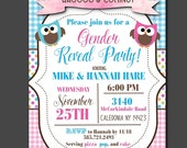 Party Invitations,  Printed Invite with Envelope, Baby Gender Reveal Party Invites, Baby Shower, Baby Pink and Blue Owls