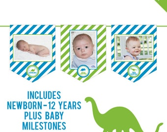 INSTANT DOWNLOAD Dinosaur Party - DIY printable photo banner kit - Includes Newborn through 12 Years, Plus Baby Milestones