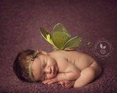 Newborn baby fairy wings faery wings photo props keepsake pictures wall art decoration