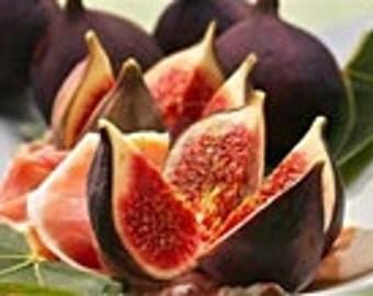 Fig Fragrance Oil 1 ounce