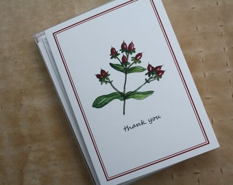 Hypericum Berry Branch Thank You Notes Handmade Note Cards, Set of 8, Winter Berry