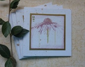 NOTECARDS/ greetings cards .  ( pack of 4 , blank ).  Coneflower/ Echinacea .UK seller ... ready to ship.