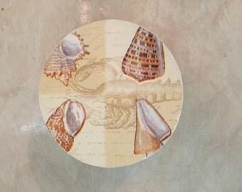 Decorative Box - Tan Shells