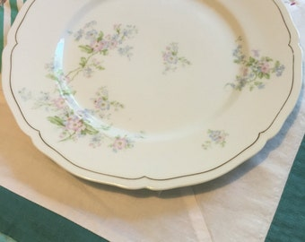 Vintage Dinner Plate Pink and Blue Viney Floral Made in Vienna Austria #3993