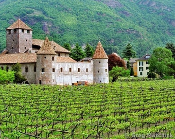 "Fine Art Color Landscape Photography of Vineyard and Castle in Italy - ""Castello Mareccio and Vineyard"""