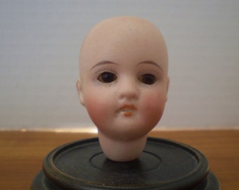 "Gebruder Kuhnlenz 44-18, 2.5"" bisque doll head only, brown glass eyes, excellent"