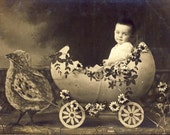 Toddler in a Extravagent Easter Egg Cart Pulled by Easter Chick Novelty Studio Photo Postcard 1916