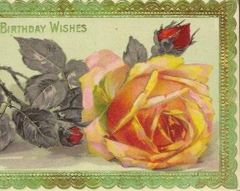 Vintage Birthday Postcard Single Rose Blossom in Orange Red Samson Brothers
