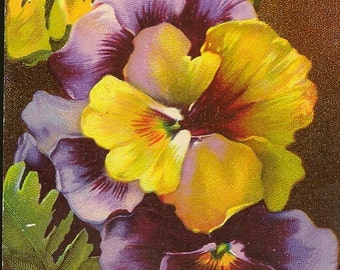 Spring Pansy Flowers in Purple and Yellow on Vintage Birthday Postcard – Beautifully Colored Floral Postcard