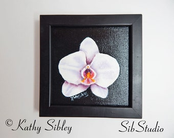 Phalaenopsis Orchid Painting, Miniature Original Painting, 4 x 4 inches, 101.6 x 101.6 mm, Acrylic Painting, Framed White Orchid Painting