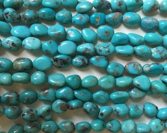 Campitos Turquoise - Full Strand - Medium  Nuggets - 9-11 mm - Beautiful Robins Egg Blue