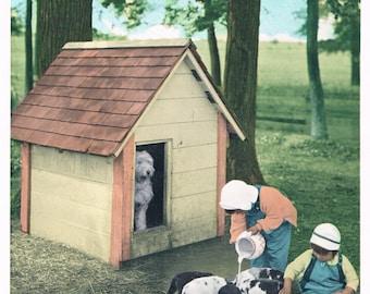 Feeding the Puppies Hand Tinted Photo Print