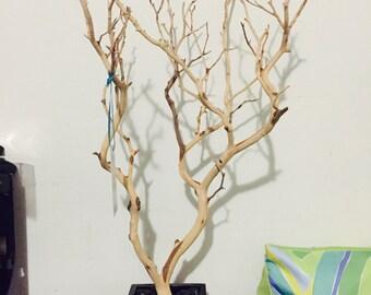 "19"" Natural Jewelry Tree with black box and black rocks / Jewelry Organizer"
