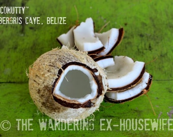 8x10/8x12 Photograph—'Fresh' (Ambergris Caye, Belize)