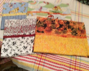 PIllowcases For Travel Pillows (4 piece)