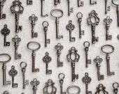 The Abbott Collection - Skeleton Key Charm Assortment in Black/Gunmetal - Set of 40 Keys